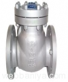 ball-valves-&-check-valves12536.jpg