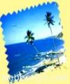 blue-line-tour-packages14597.jpg