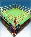 boxing-ring14234.jpg