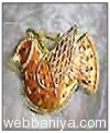 decorative-chrismas-wall4941.jpg