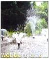 fountains9872.jpg