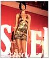 ladies-fashion-wear2882.jpg