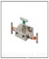 manifold-valve9823.jpg