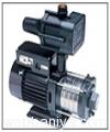 pumps2343.jpg