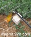 solar-pumping-system13244.jpg
