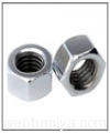 stainless-steel-nuts11232.jpg