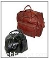 travel-bags8976.jpg