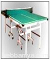 tt-table2917.jpg
